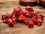 Monsoon Spice Company Carolina Reapers Dry Whole