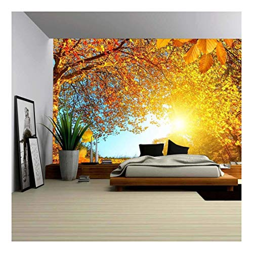 wall26 - Golden Autumn Scenery with a Nice Tree, Falling Leaves, Clear Blue Sky and The Sun Shining Warmly - Removable Wall Mural | Self-Adhesive Large Wallpaper - 100x144 inches ()
