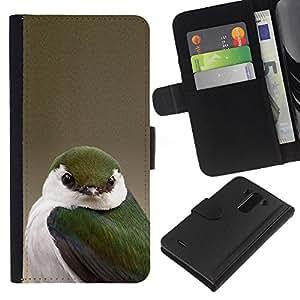 Planetar® Modelo colorido cuero carpeta tirón caso cubierta piel Holster Funda protección LG G3 ( Green Songbird Beige White Green Nature )
