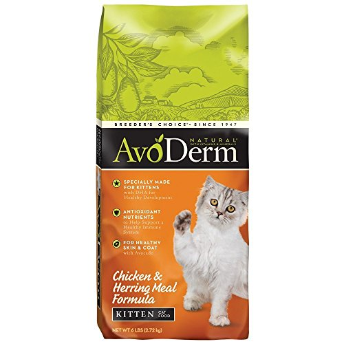 Avoderm Natural Chicken & Herring Meal Formula Dry Kitten Food, 6-Pound