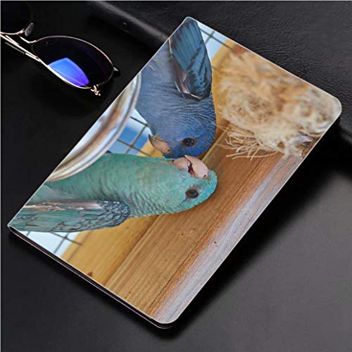 "iPad 9.7"" 2018 / iPad Air 1/2 Case Family Portrait of Blue and Turquoise Barred Parakeet Close up 360 Degree Swivel Mount Cover for Automatic Sleep Wake up ipad"