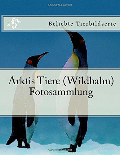Arktis Tiere (Wildbahn) Fotosammlung: Beliebte Tierbildserie (German Edition)