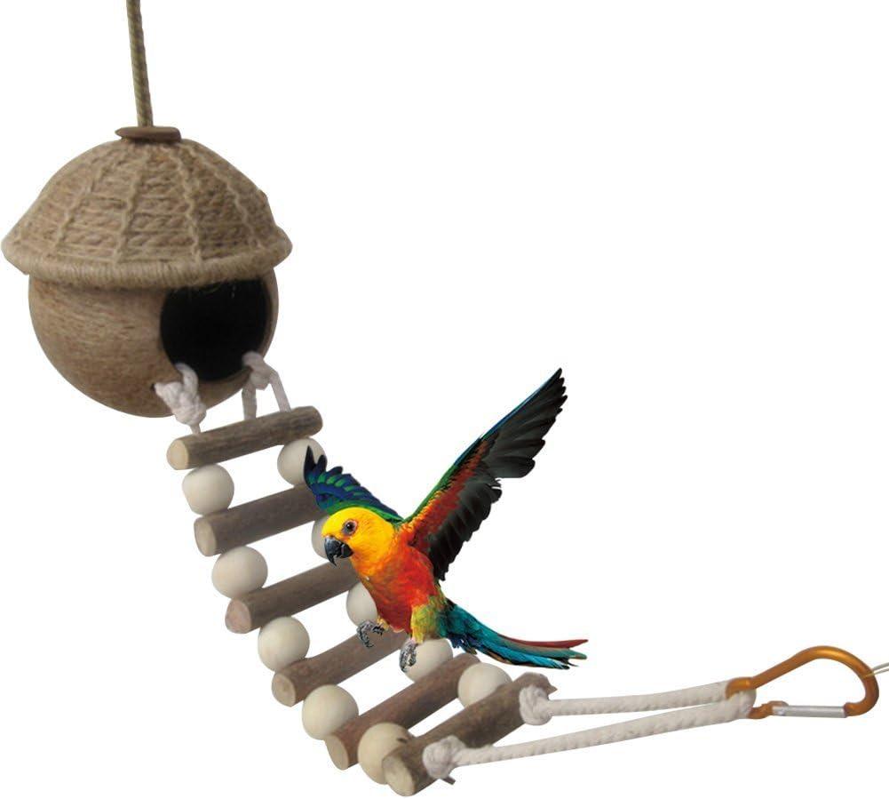 Yueunishi Nido de pájaro loro, Nido de cría, Loro Juguete de coco, Nido de pájaro de cáscara de coco natural Nido con Escalera de loro