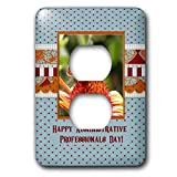3dRose Beverly Turner Administrative Professionals Day - Administrative Professionals Day, Fiery Skipper on Cone Flower, Frame - Light Switch Covers - 2 plug outlet cover (lsp_286983_6)