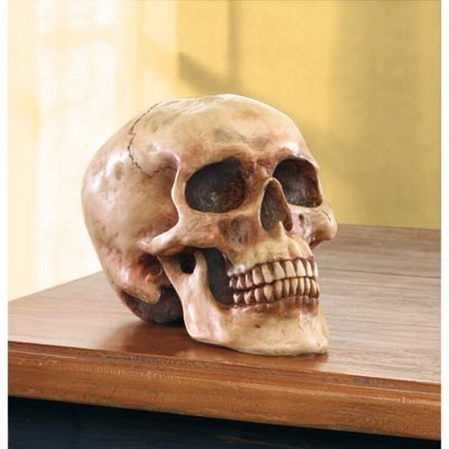 Gifts & Decor Grinning Realistic Replica Human Skull Home Statue>