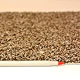All American Carpet Tiles Wellington 23.5 x 23.5