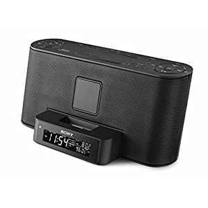 Sony Speaker Dock/Clock Radio for iPod and iPhone - Black