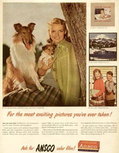 Ansco Color Film (Lovely Color Photo Images in 1947 ANSCO Color Film AD Original Paper Ephemera Authentic Vintage Print Magazine Ad/Article)