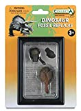 CollectA Prehistoric Life Tooth & Tail Club of Ankylosaurus in Display Case - Paleontologist Approved Dinosaur Fossil Replica