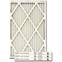 Trane/American Standard PERFECT FIT Air Filter (BAYFTFR17P4)