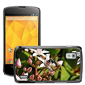 Super Stella Slim PC Hard Case Cover Skin Armor Shell Protection // M00146729 Wasp Flower Insects Flora Nature // LG Nexus 4 E960