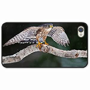 iPhone 4 4S Black Hardshell Case stroke wings Black Desin Images Protector Back Cover