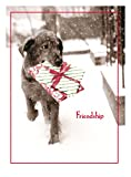 Avanti Press Christmas Cards, Friendship is The Best Gift of All, 50 Count Value Pack (32567)