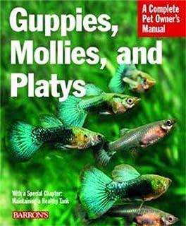 Livebearers Understanding Guppies Mollies Swordtails And Others