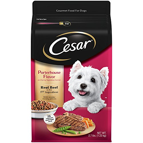 - Cesar Small Breed Dry Dog Food