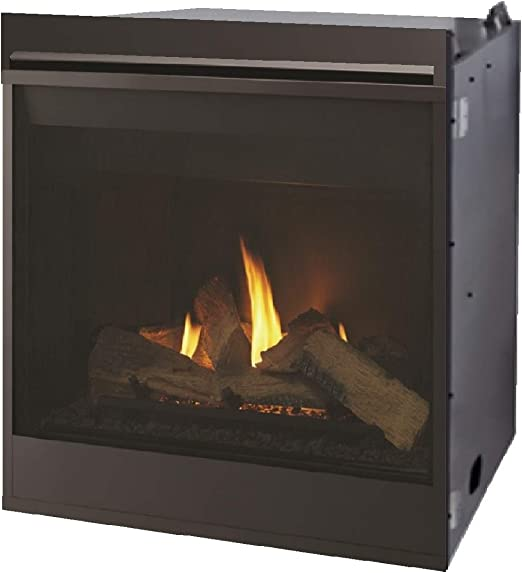 Amazon Com Majestic Meridian Series Direct Vent Gas Fireplace