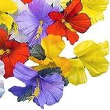 Adorox Hawaiian Luau Artificial Hibiscus Tropical Flower Petals Scatter Tabletop Decoration Wedding Confetti Party Favor (24 Pcs)