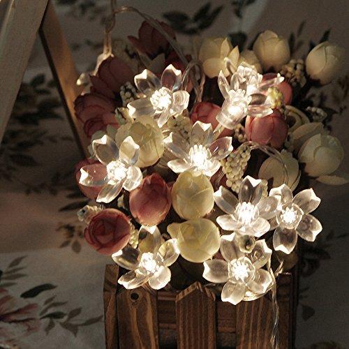 Led Christmas Lights Amazon