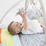 Skip Hop Silver Lining Cloud Baby Play Mat and