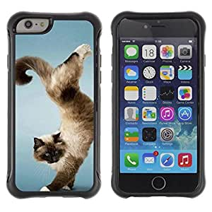 "Hypernova Defender Series TPU protection Cas Case Coque pour Apple Iphone 6 PLUS 5.5 [Divertido truco Gato Hermoso""]"