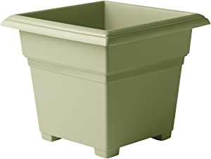 Novelty 26140, Sage, Countryside Square Tub Planter, 14-Inch