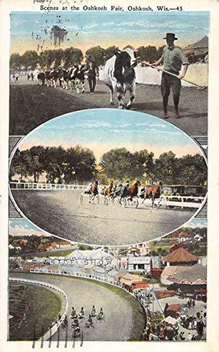 Oshkosh Wisconsin Fair Scene Animals Multiview Antique Postcard K102436