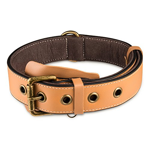 Pikaon Dog Collar, Soft Padded Leather Collar Heavy Duty Training Collar for Medium to Large Dogs 18-23 -Brown