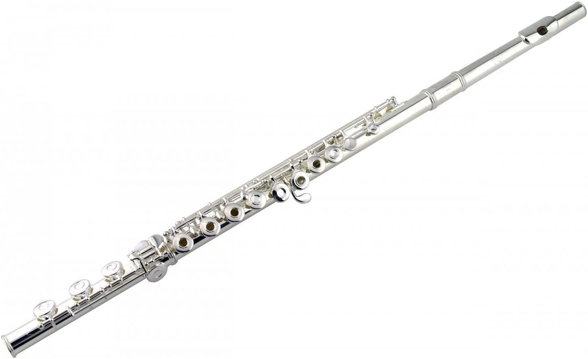 for flute with low B foot joint CASE ONLY French Style Flute CASE