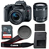 Canon EOS Rebel SL2 24.2 MP CMOS Digital SLR Camera with 3.0-Inch LCD with EF-S 18-55mm f/4-5.6 IS STM Lens - Wi-Fi Enabled (Certified Refurbished)