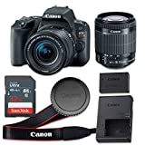 Canon EOS Rebel SL2 24.2 MP CMOS Digital SLR Camera with 3.0-Inch LCD with EF-S 18-55mm f/4-5.6 IS STM Lens – Wi-Fi Enabled (Certified Refurbished)