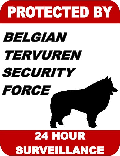 Top Shelf Novelties Protected by Belgian Tervuren Security Force 24 Hour Surveillance Laminated Dog Sign SP1703 (Includes Bonus I Love My Dog Decal) ()