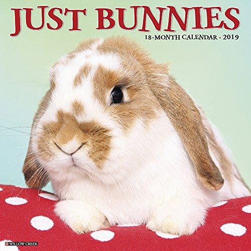 Just Bunnies 2019 Wall Calendar