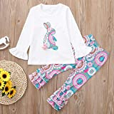 1-6 Years Toddler Kids Baby Girls Long Sleeve Little Animals Top T Shirt+ Cute Floral Pants Clothes Home Wear Outfit Sets (White C, 5T)