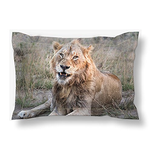 Custom Pillow Sham | King & Queen Bedding Shams | African Lion Custom Print Bedding Set | Wildlife Bedroom Decor | Safari (Wild Animals Sham)