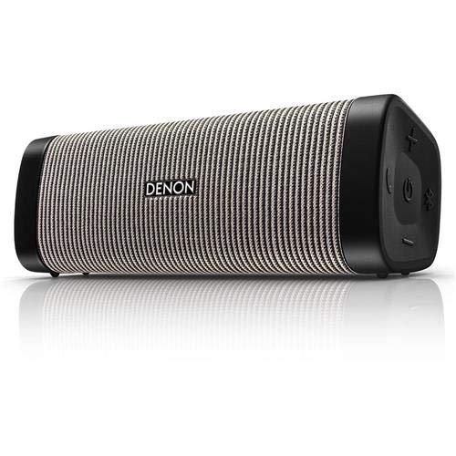 DenonDsb-250Bt Envaya Portable Bluetooth Speaker (Gray)
