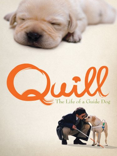 Quill: The Life of a Guide Dog (English Subtitled) ()