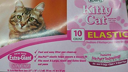 cat not using litter pan