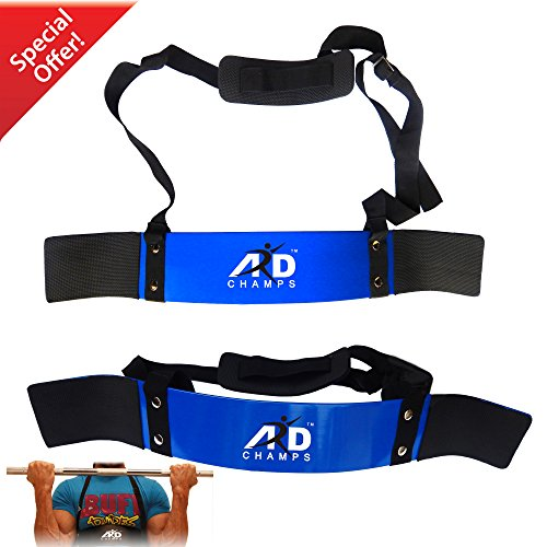 ARD CHAMPS Heavy Duty Arm Blaster Body Building Bomber Bicep Curl Triceps Blue
