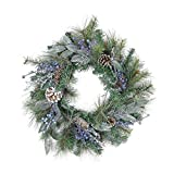 Northlight Mixed, Berries and Snowy Pine Cones Artificial Christmas Wreath-Unlit, 24'', Blue