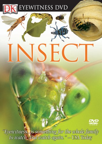 Eyewitness DVD: Insect (Eyewitness Videos)