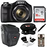 Sony Cyber-shot DSC-H300 Digital Camera (Black) with 16GB Accessory Kit