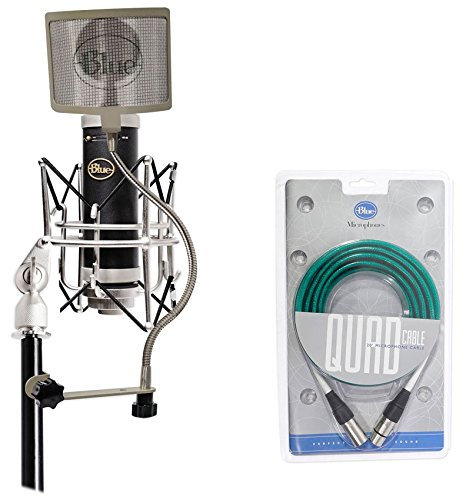 Blue Baby Bottle SL Studio Condenser Recording Microphone Mic+Cable+Filter+Case