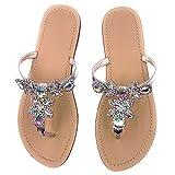 AZMODO Women's Silver Hand Crafted Flip Flop Rhinestones Sandals Y22 (US 8.5/EU 39/CN 40)
