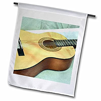 3dRose fl_29245_1 Guitar Strings Music instruments Garden Flag, 12 by 18-Inch by 3D Rose - LG