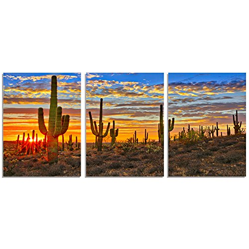 (GEVES Botanical Cactus Wall Art Paintings North American Sonoran Desert Sunset Landscape Canvas Prints Pictures for Living Room Decoration Framed Ready to Hang)