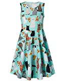 Funnycokid Girls Sleeveless Crew Neck Cat and Pizza Printed A-Line Dress 6-7 T