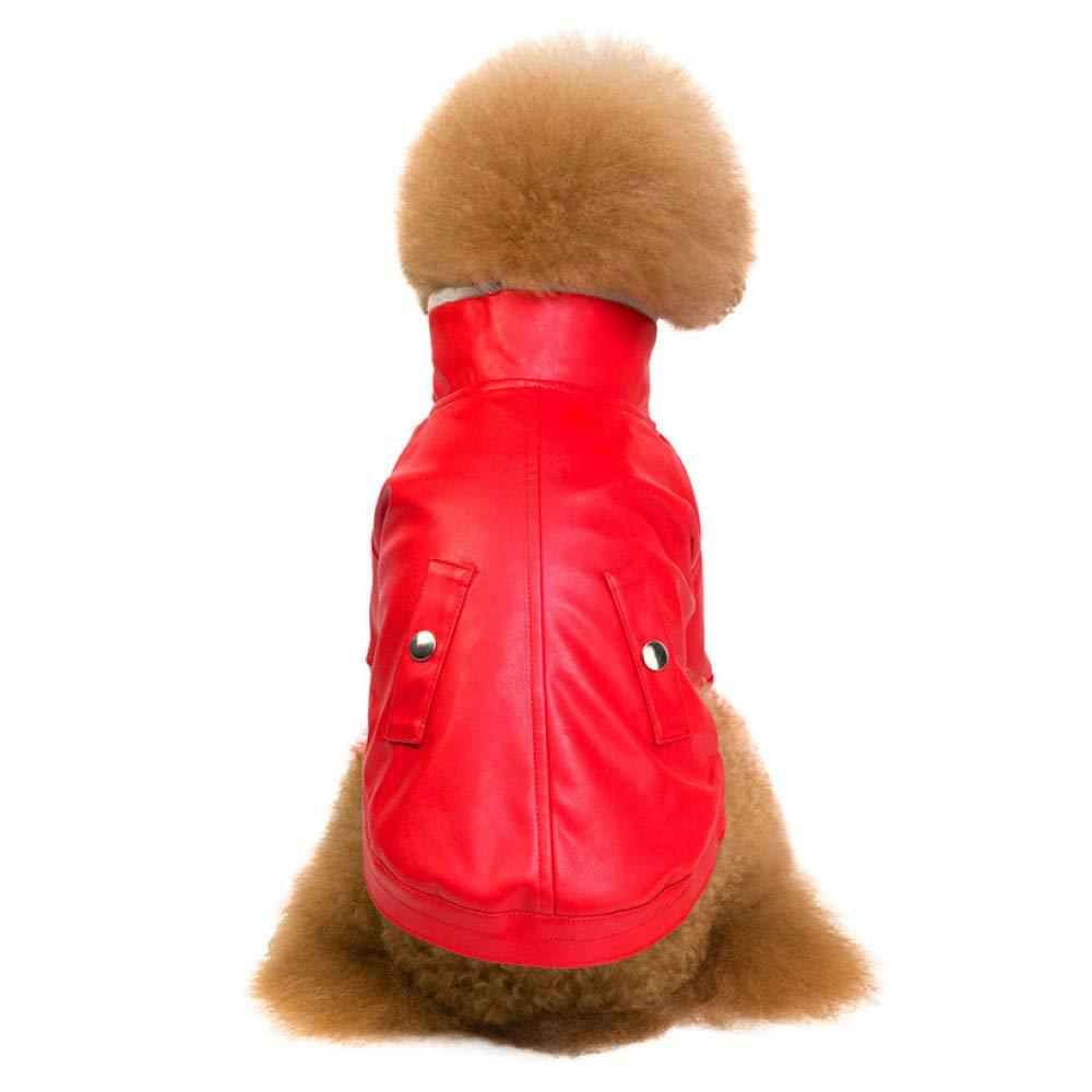 CWYPWDY Pet Kleidung Cooler Hund Lederjacke Mantel Moto Biker Warme M/äntel Kalt Winter Verdickt Pelz Rei/ßverschluss Hundebekleidung