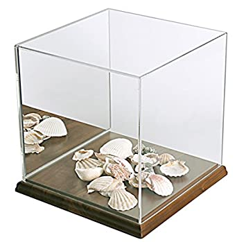 4 -3 8H x 4 W x 4 D Clear Acrylic Box Case with Mirrored Back Panel and Walnut Base