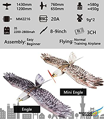 Dancing Wings Hobby RC EPP Electric Airplane 1430mm Eagle unassembled; Scale 3CH Remote Controlled Aircraft KIT to Build for Adults