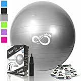 Live Infinitely Exercise Ball (55cm-95cm) Extra Thick Professional Grade Balance & Stability Ball- Anti Burst Tested Supports 2200lbs- Includes Hand Pump & Workout Guide Access Silver 55cm